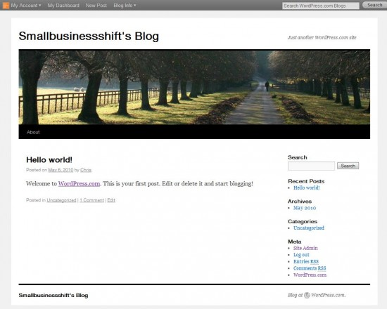 Wordpress.com New Blog - 2010 Theme