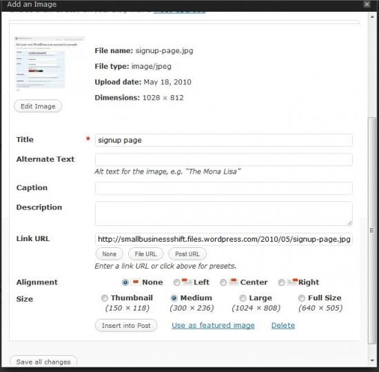 Adding An Image To WordPress - Options Menu